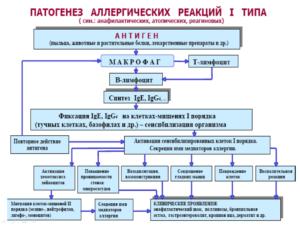 патогенез, реакция первого типа, аллергия