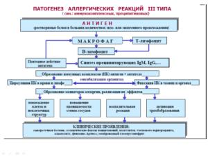патогенез, реакции третьего типа