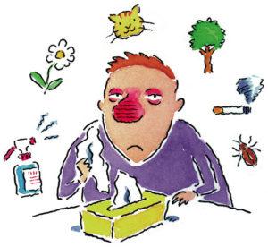 Аллергия, презентация, причины