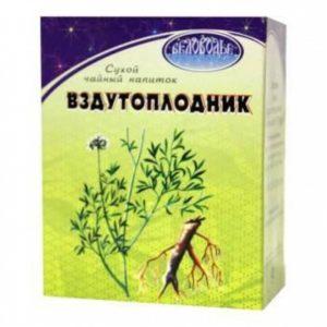Сухой чай, вздутоплодник, растения, курсовая