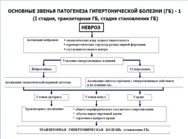 Артериальная гипертензия, патогенез