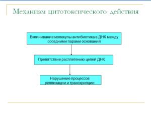 Механизм действия противоопухолевых антибиотиков