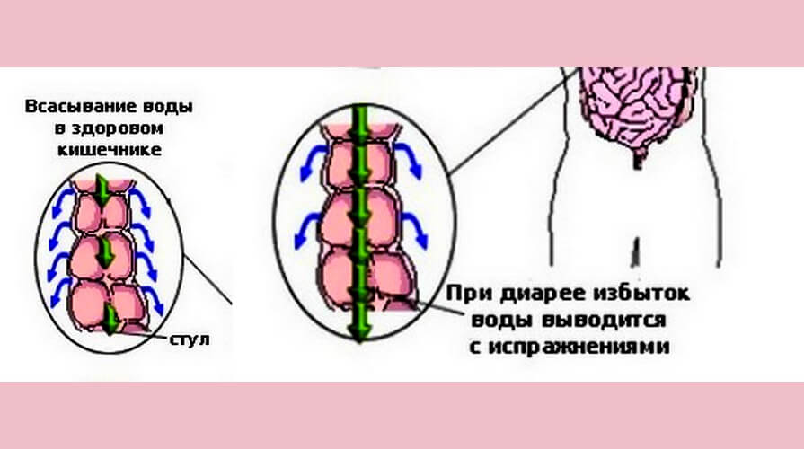 диарея, механизм